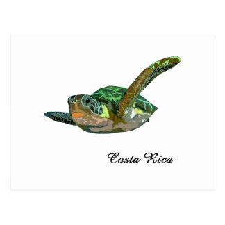 Tartaruga de mar de Costa Rica Cartões Postais