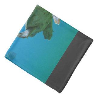 Tartaruga de mar na água azul faixas para cabeça