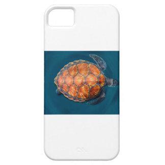 Tartaruga de mar verde capa para iPhone 5