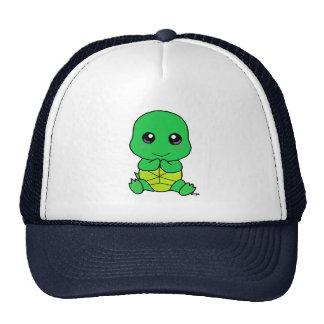 Tartaruga do bebê bonés