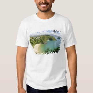 Tasman capaz NP, Nelson, Nova Zelândia. O muitos Tshirts