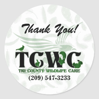 TCWC - Obrigado do verde do logotipo você Adesivo Redondo
