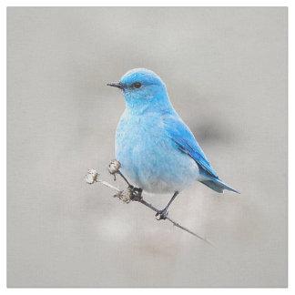 Tecido Bluebird bonito da montanha