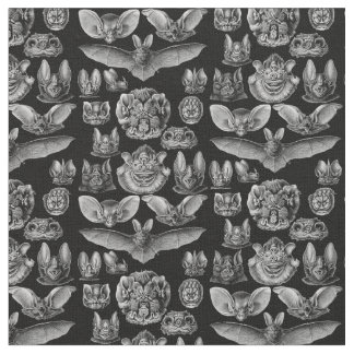 Tecido Chiroptera 1904 de Haeckel