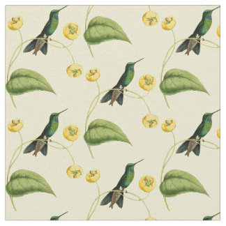 Tecido Colibri brilhante coroado verde do vintage