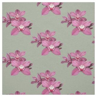 Tecido cor-de-rosa das orquídeas
