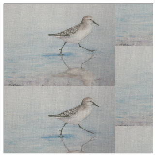 Tecido da arte do pássaro do gaiteiro da areia