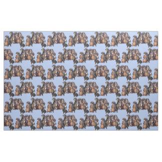 Tecido Dachshunds no azul