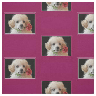 Tecido do teste padrão do cão de caniche dos