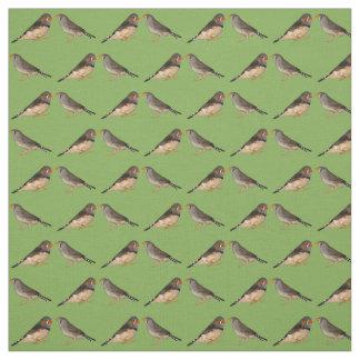 Tecido dos passarinhos de zebra (verde)