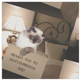 Tecido Gato na caixa