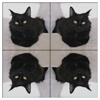 Tecido Gato no sofá