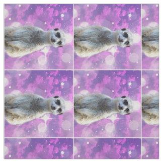 Tecido Material penteado faísca do algodão de Meerkat