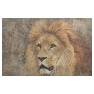 Tecido Natureza de África dos animais selvagens do leão