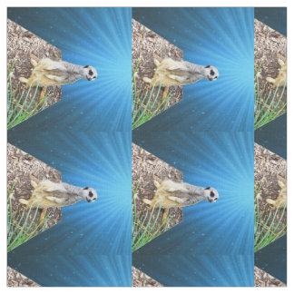 Tecido Noite azul de Meerkat, material penteado do