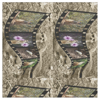 Tecido Tira da foto de Meerkat do vintage,
