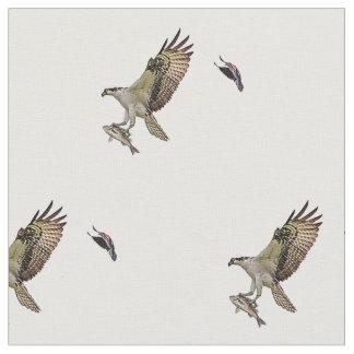 Tecido Um osprey do homem que leva um peixe e que está