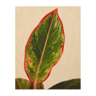 Tela De Madeira Arte de madeira da parede do Aglaonema do vermelho