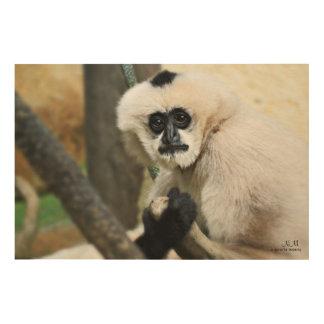 Tela De Madeira Arte de madeira da parede do Gibbon Branco-Cheeked
