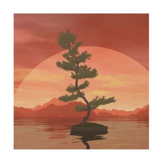 Tela De Madeira Árvore dos bonsais do pinho escocês - 3D rendem