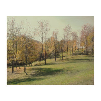Tela De Madeira Árvores na inclinação suspensão de madeira do