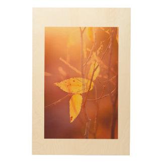 Tela De Madeira As cores do outono