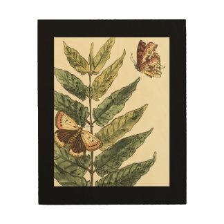 Tela De Madeira Borboletas & folhas com quadro preto