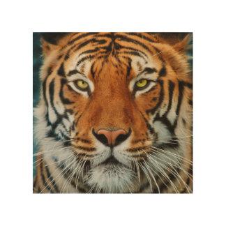 Tela De Madeira Cara do tigre