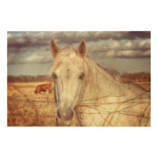 Tela De Madeira Cavalo de Texas