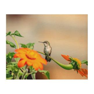 Tela De Madeira colibri 10x8 em uma planta de florescência