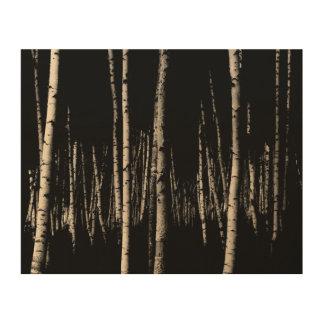 Tela De Madeira Floresta da árvore de vidoeiro no Sepia