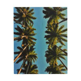 Tela De Madeira Foto tropical do verão da praia da palmeira