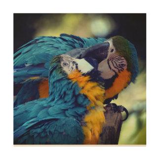 Tela De Madeira Macaws azuis e amarelos