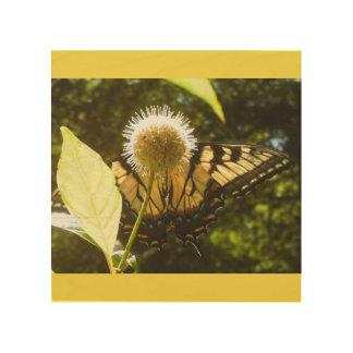 Tela De Madeira Monarca do amarelo da arte da parede da madeira de