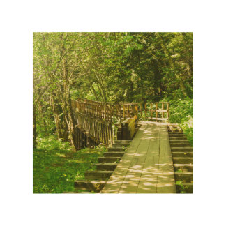 Tela De Madeira O impressão de madeira da fuga do canal