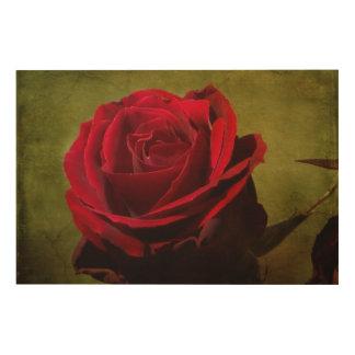 Tela De Madeira Painel Textured da madeira da rosa vermelha