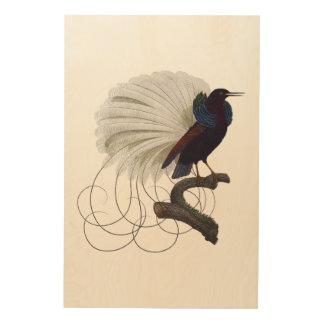 Tela De Madeira Pássaro exótico tropical