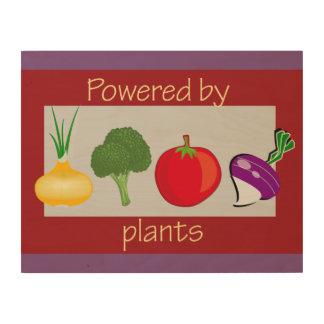 Tela De Madeira Psto por plantas