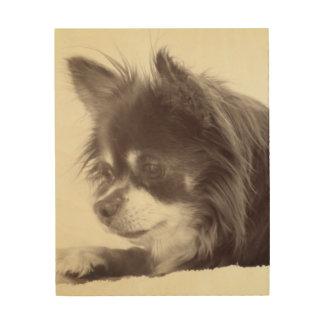 Tela De Madeira Retrato do cão da chihuahua