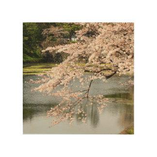 Tela De Madeira Sakura sobre o fosso