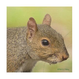 Tela De Madeira Trabalhos de arte da madeira do perfil do esquilo