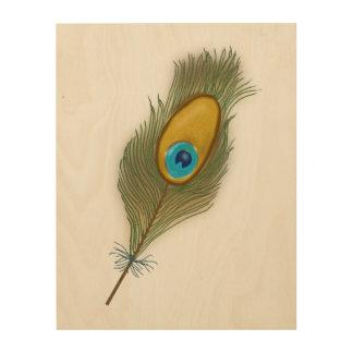 Tela De Madeira Uma pena colorida do pavão