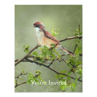 Tema do pássaro de Whitethroat da aguarela do Convite 10.79 X 13.97cm