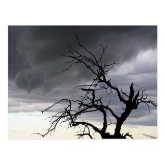 Tempestade de Guadalupe Cartão Postal