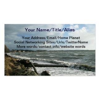 Tempestade do vento da baía do vidoeiro cartão de visita