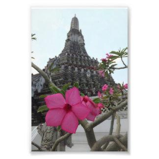Templo da flor do alvorecer impressão de foto