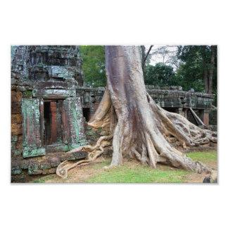 Templo de Ta Prohm em Cambodia Artes De Fotos