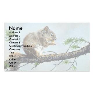 Tempo do almoço, esquilo cartao de visita