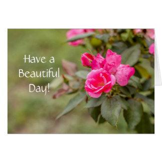 Tenha um cartão bonito do dia