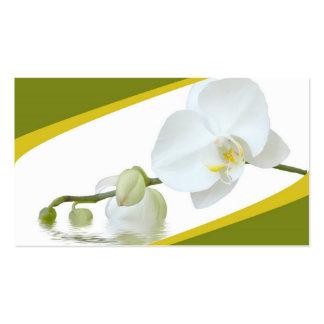 Termas da orquídea modelos cartões de visita